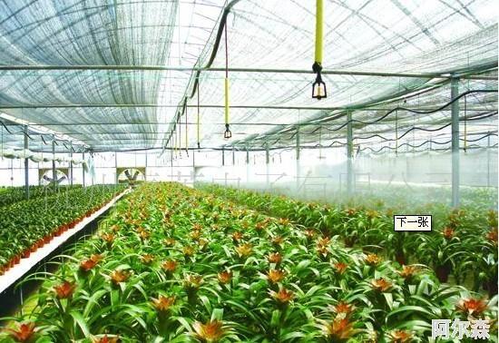 农业大棚自动通风系统-CO2传感器应用